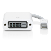 Cover Image for Apple Mini DisplayPort to DVI Adapter